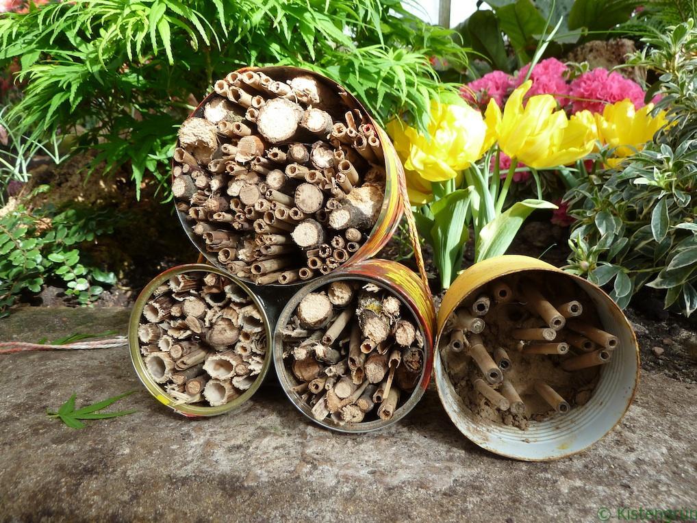 Upcyceln statt wegwerfen: Aus Konservendosen kann man tolle Insektenhotels bauen - so wie diese in der botanika.