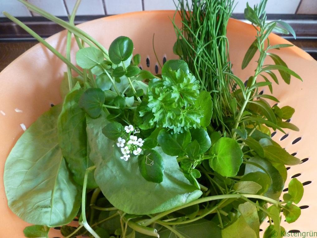 Ernte vom Balkon: Salat und essbare (Wild-)Kräuter.