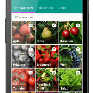Plantix-App erkennt automatisch Pflanzenkrankheiten und Schädlingsbefall