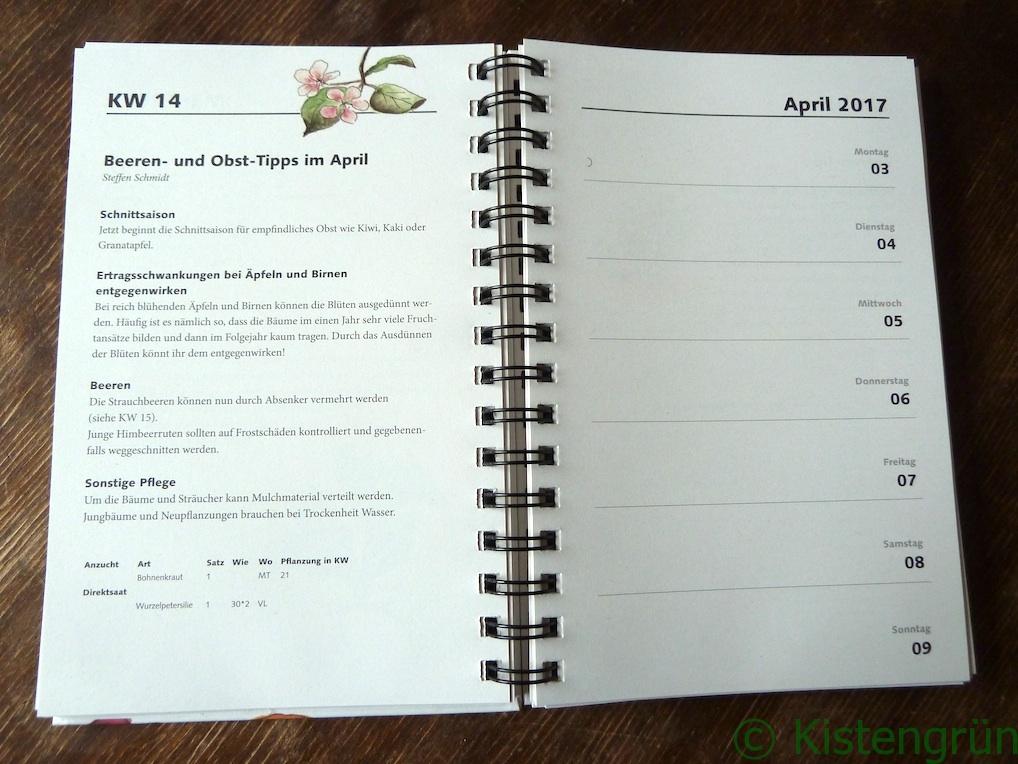 Einblick in einen TaschenGarten mit Tipps und Kalender