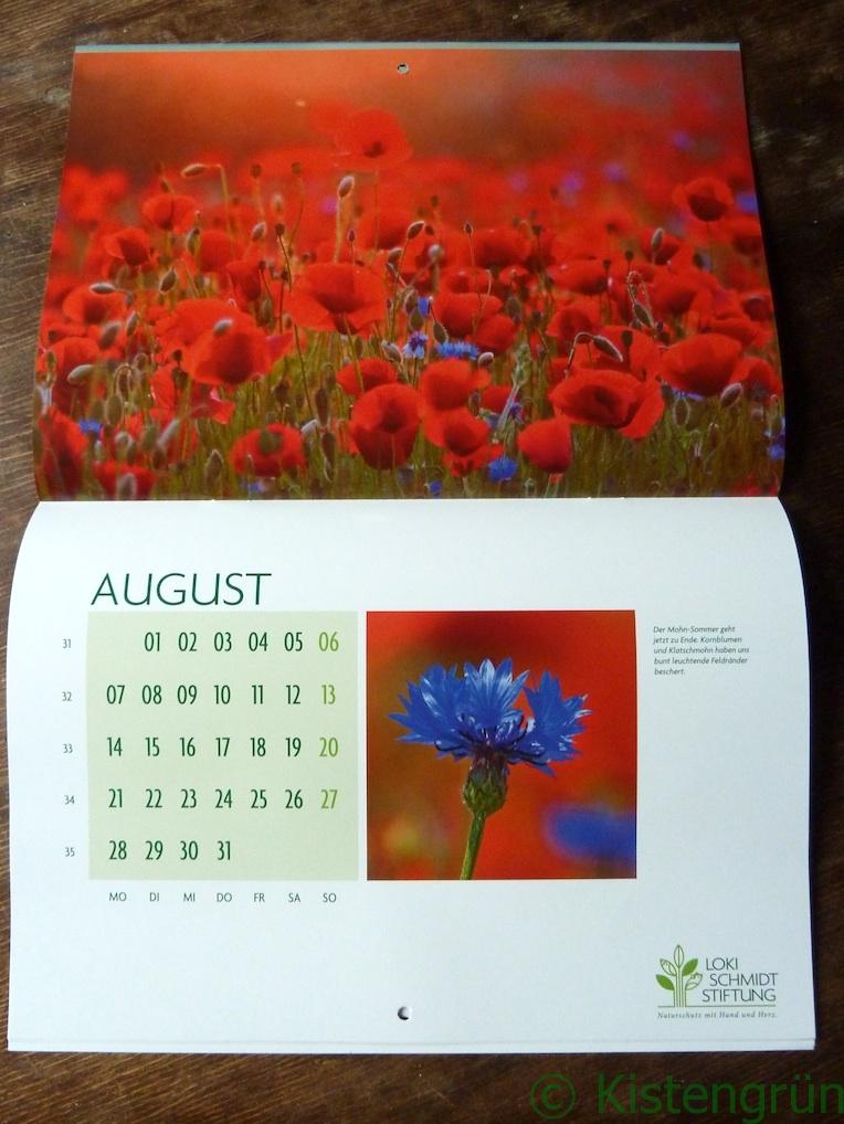 ausgeschlagener Kalender der Loki-Schmidt-Stiftung zur Blume des Jahres 2017, Klatschmohn