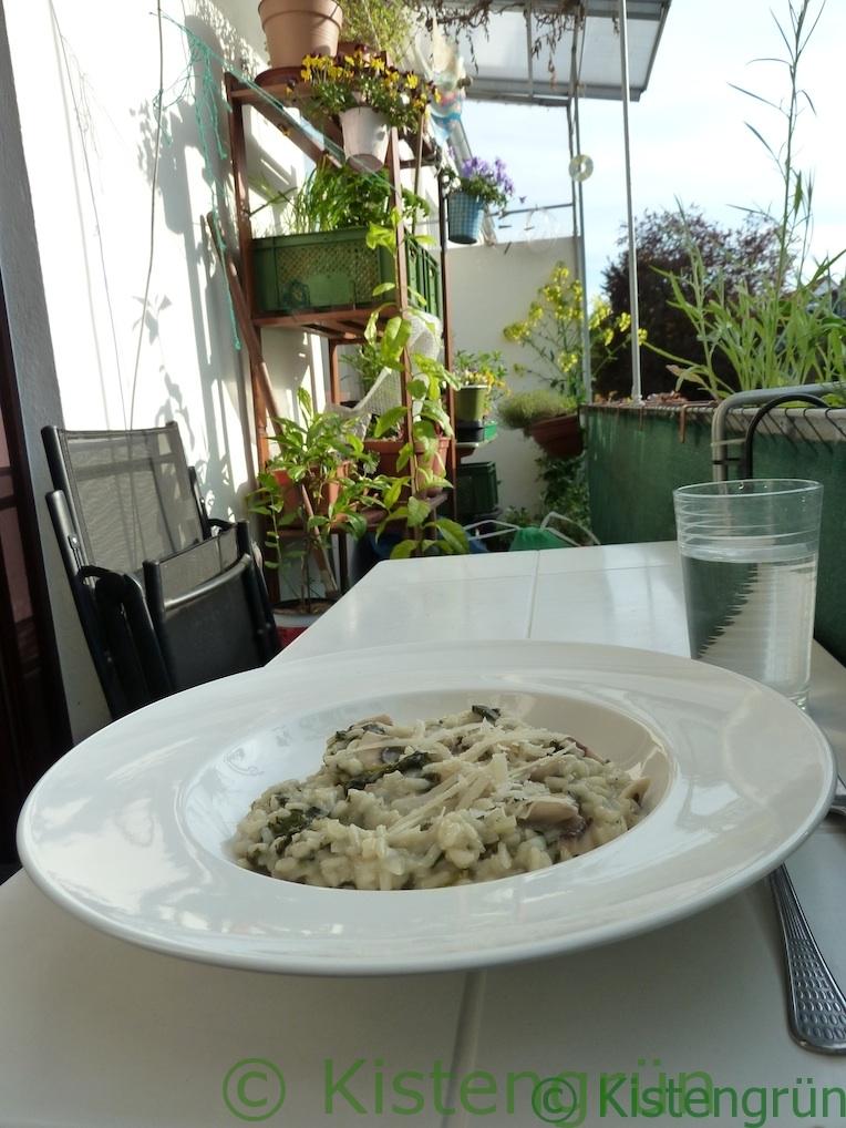 ein Teller mit Brennnessel-Risotto auf einem Tisch im balkongarten