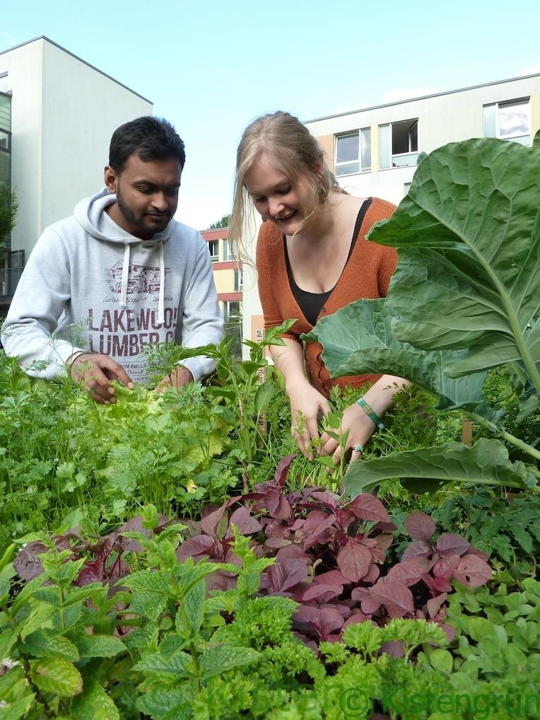 Jitin und Johnna in ihrem Beet im International-Gardening-Projekt in Bremen