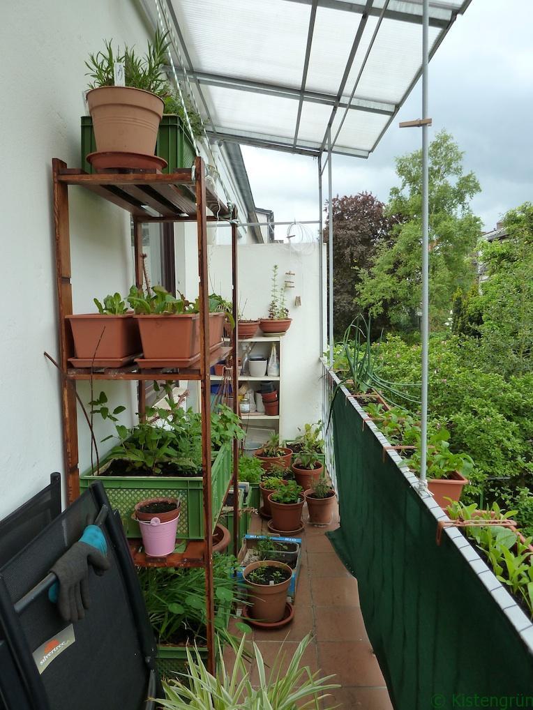 Mein Balkongarten: Knapp sechs Quadratmeter Fläche, aber immerhin mit Dach!