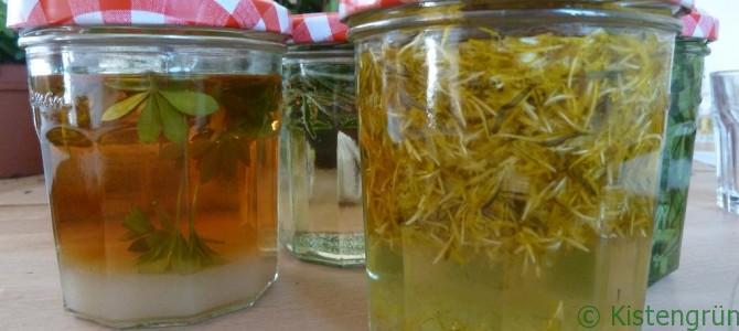 Wilde Woche: Küche statt Kompost