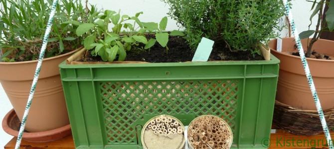 Vertical Gardening für Anfänger
