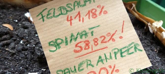 Ihr habt gewählt: Spinat ist das nächste Kistengrün!