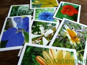 selbst gebastelte Karten mit bunten Blumen-Fotos