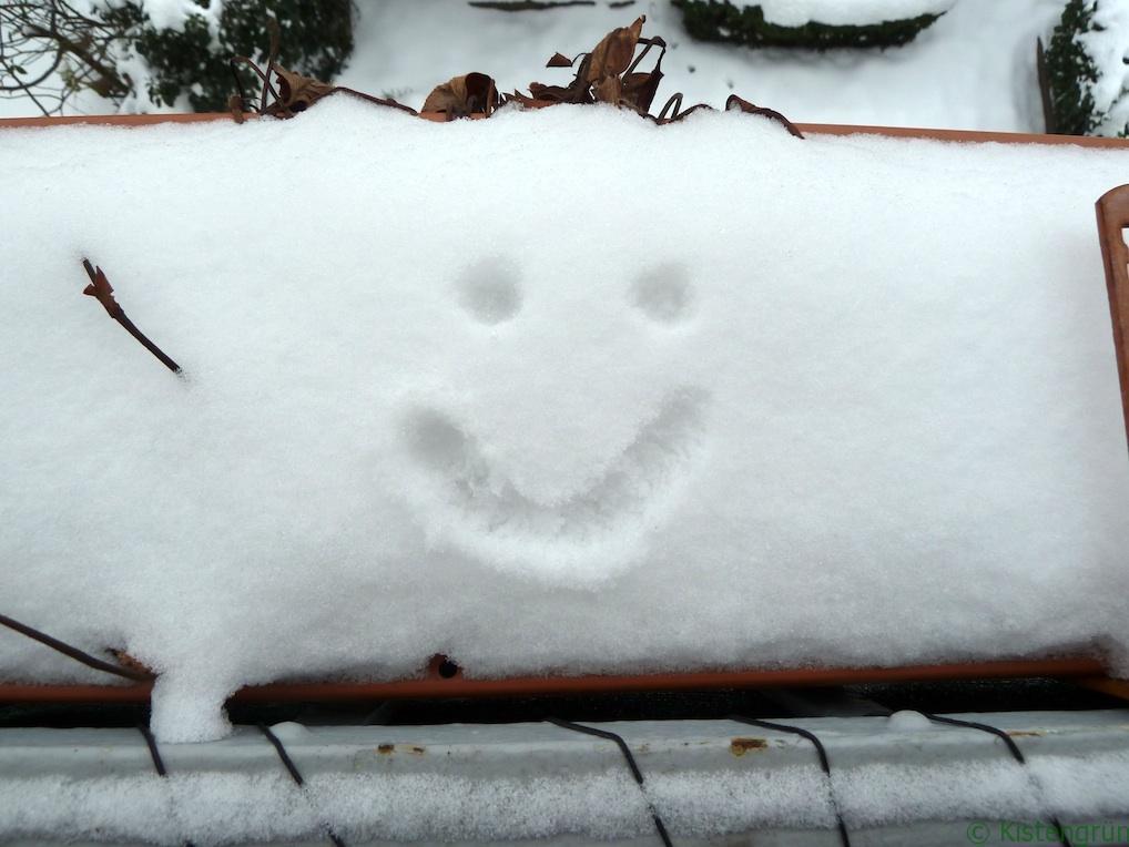 Lachendes Gesicht im Schnee