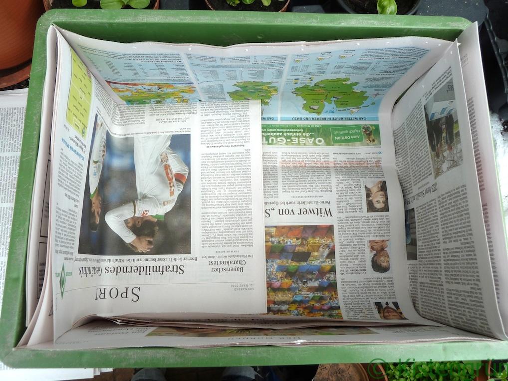 Gemeinsame Urban Gardening: Anleitung zum Kisten bepflanzen @EZ_73