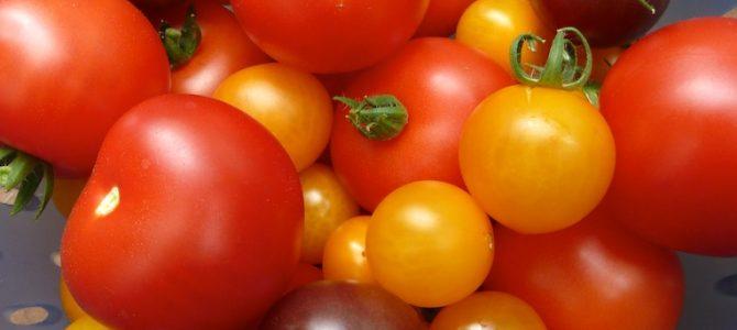 Balkongarten anlegen für Anfänger: So baut ihr Gemüse und Kräuter auf dem Balkon an