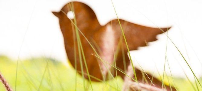 Fröhliches Gartengezwitscher