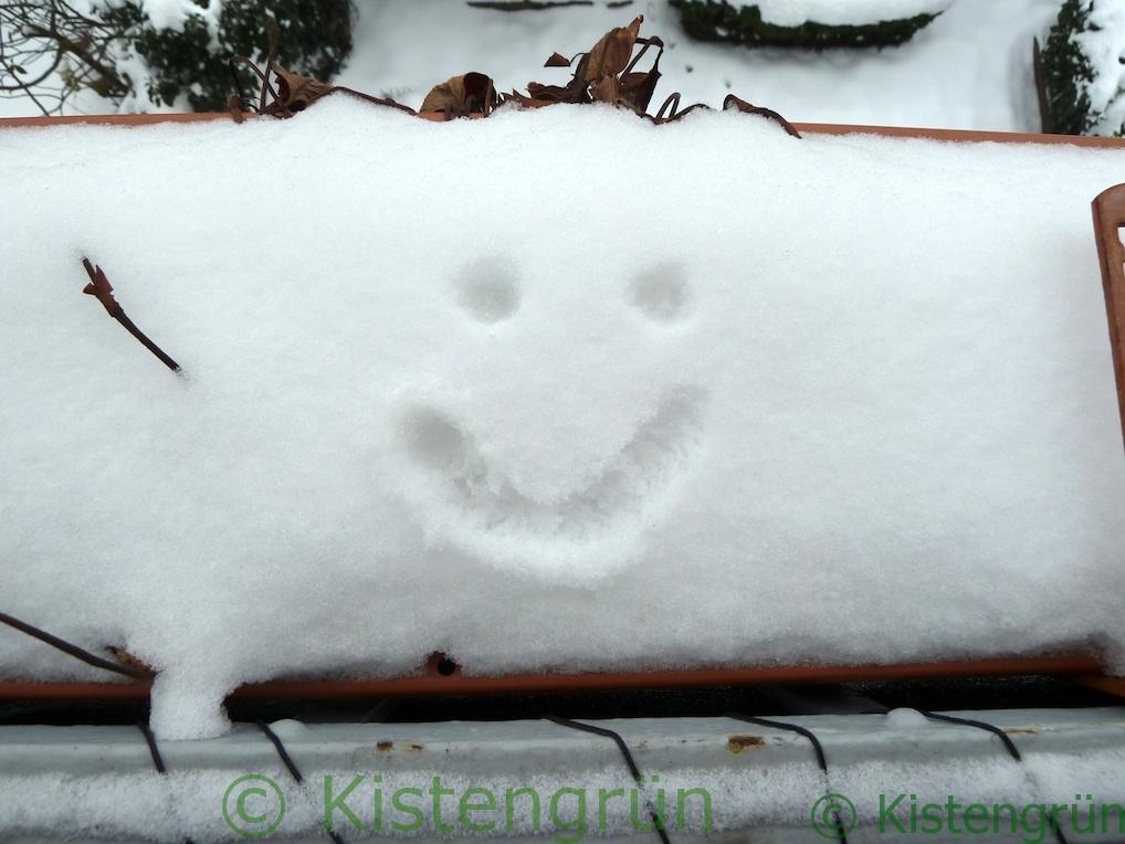 Balkonkasten mit Schnee, in dem ein lächelndes Gesicht gemalt ist