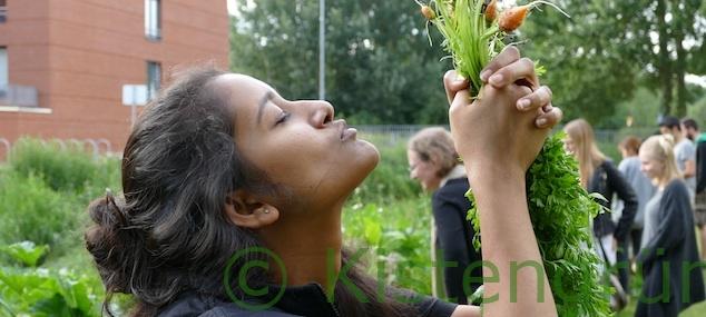 International Gardening: Warum Studierende in Bremen gemeinsam gärtnern
