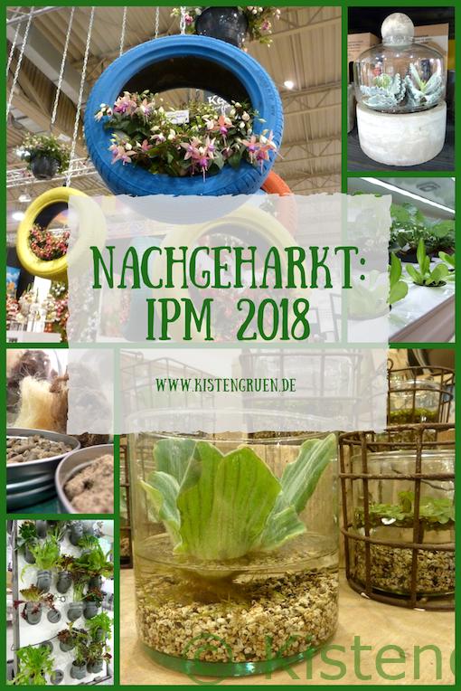 IPM 2018 - Rückblick bei Kistengrün