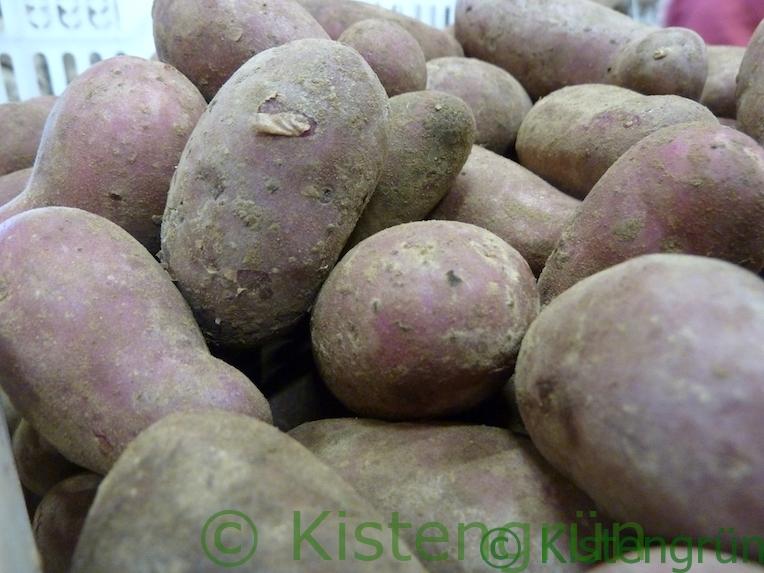 Rote Emmalie ist die Kartoffel des Jahres 2018.
