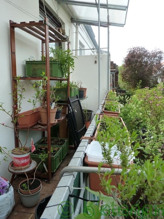 Balkon-Garten 2018 im April