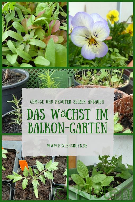 Diese Kräuter Und Gemüse Sorten Wachsen Im Balkon Garten 2018