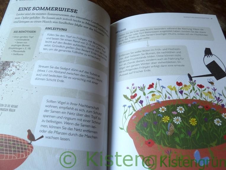 Aus Holly Farrell's Buch Miniaturgärten: Sommerwiese