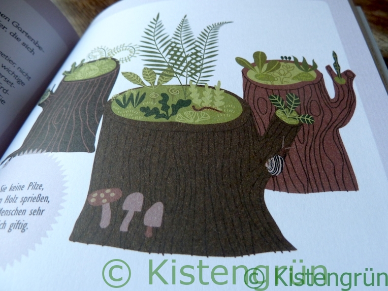 Aus Holly Farrell's Buch Miniaturgärten: ein Totholzgarten
