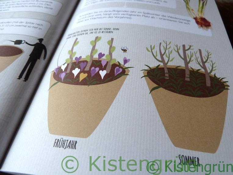 Aus Holly Farrell's Buch Miniaturgärten: ein Weidenwald