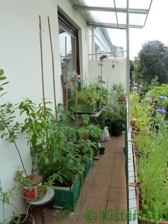 Balkon-Garten im Mai