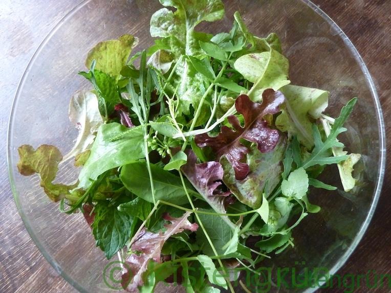Grüner Salat mit verschiedenen Kräutern aus dem Balkon-Garten