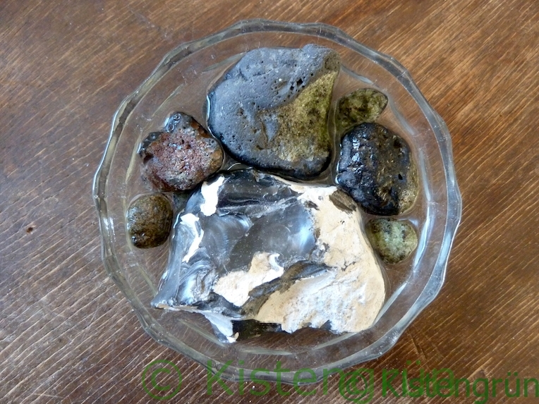 Wasser, Steine und eine flache Schale für eine Bienentränke