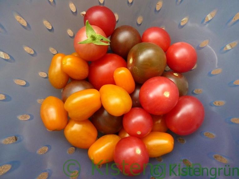Bunte Tomaten in einem blauen Sieb