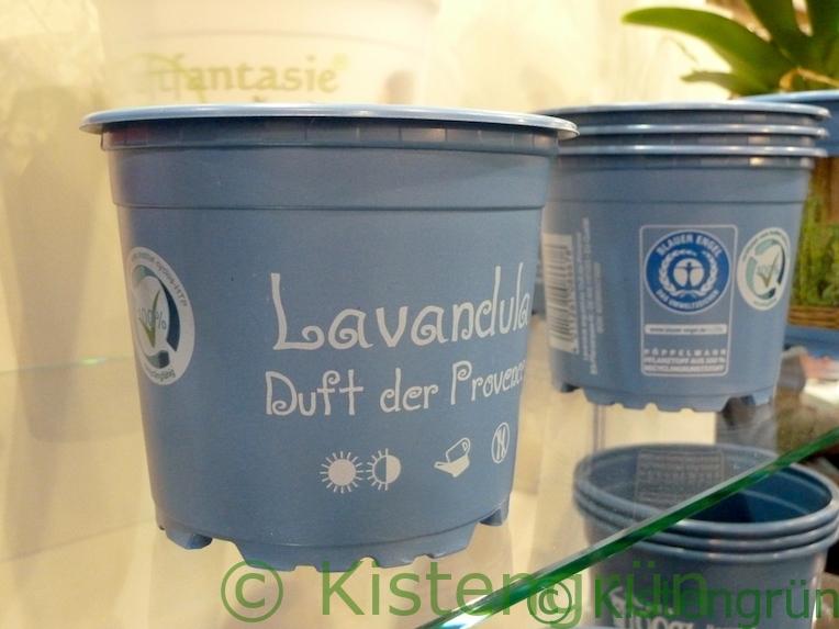 Blaue Blumentöpfe aus Recycling-Kunststoff
