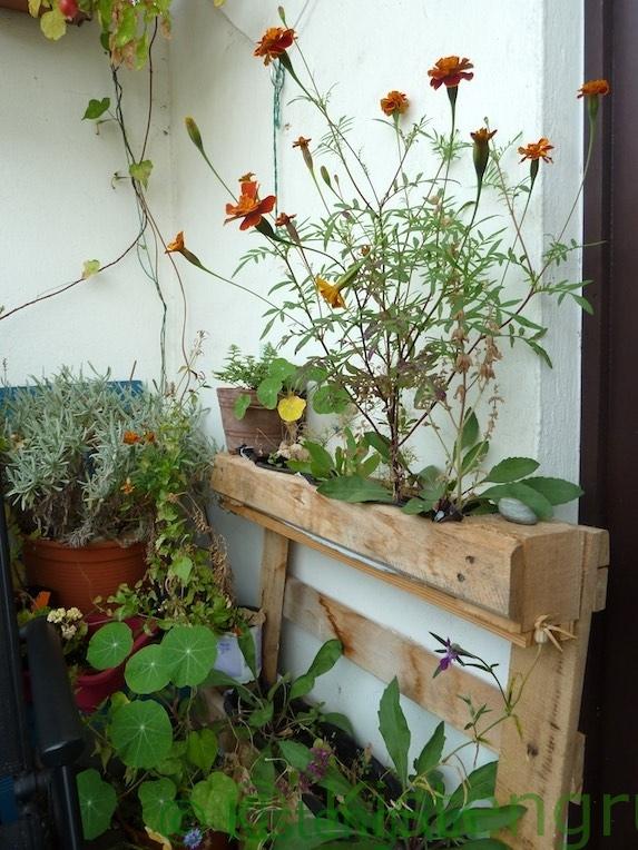 vertikales Blumenbeet