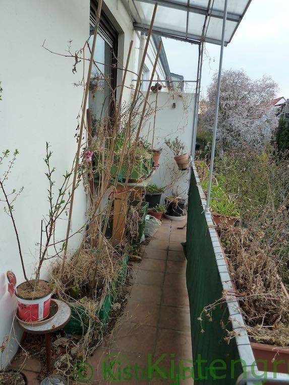 Balkon-Garten vor dem Frühjahrsputz